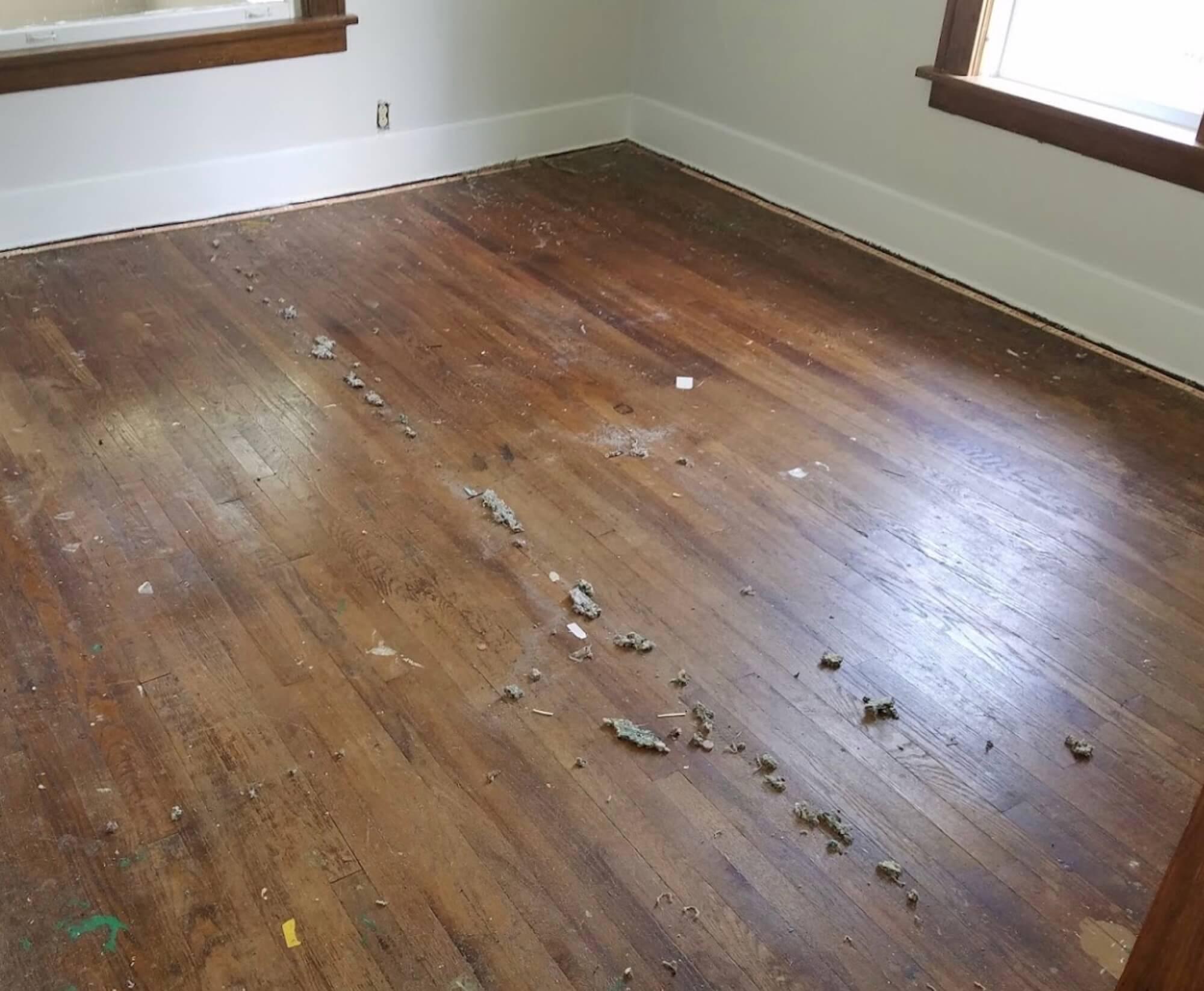 damaged hardwood floor in trenton, nj
